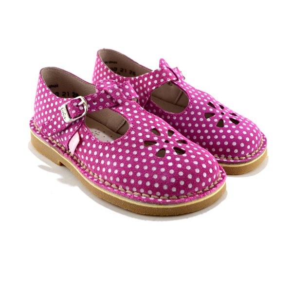 how to buy new high quality new release Aster - Dingo fuxia pois